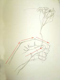 Hand and flowers observational drawing art lesson for Hand holding a rose drawing