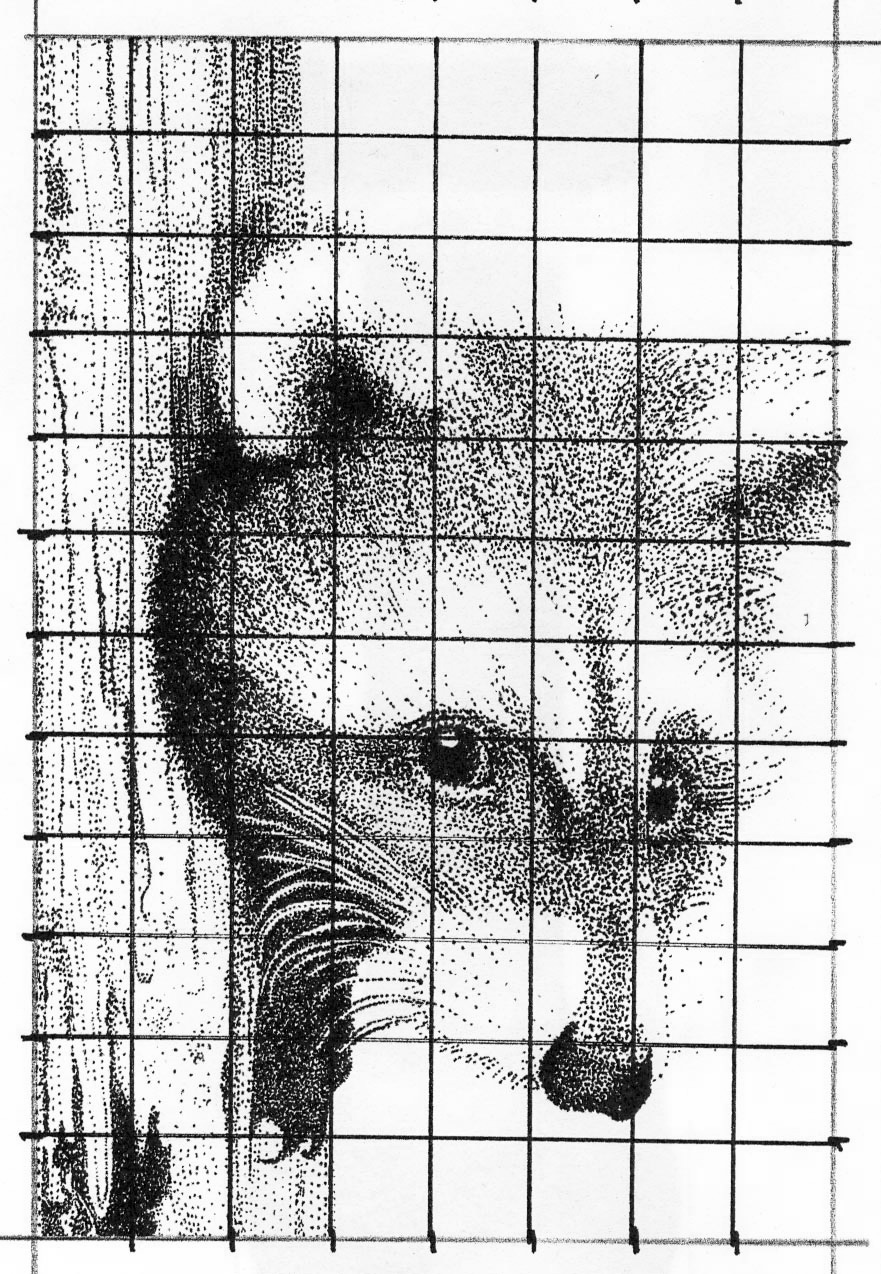 Pointillism Drawing Grid Method Art Lesson
