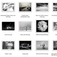 contact sheet in Photoshop